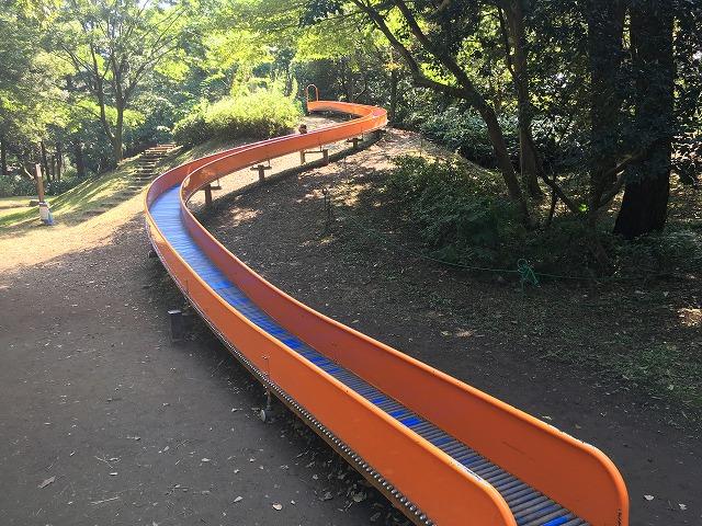 昭和記念公園 こどもの森 風のすべり台