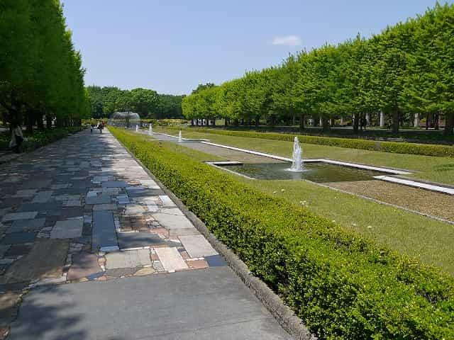 昭和記念公園 カナール