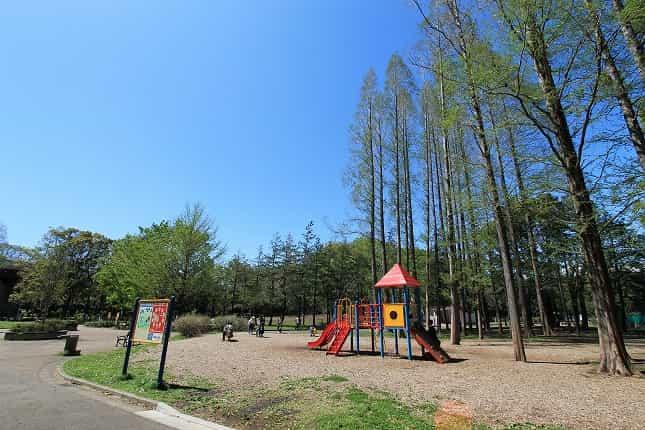 赤塚公園 中央地区