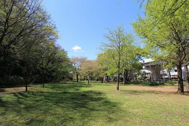 赤塚公園 沖山地区