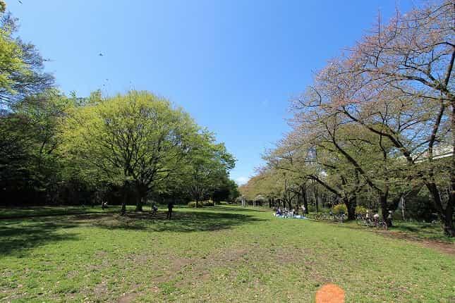 赤塚公園 番場地区