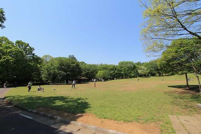 大泉中央公園 陽だまりの広場