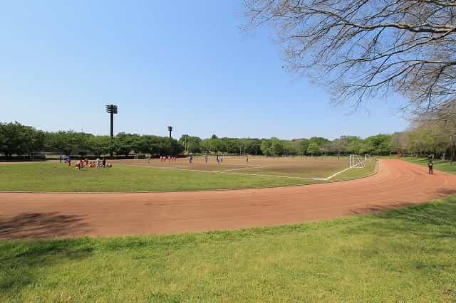大泉中央公園 多目的広場
