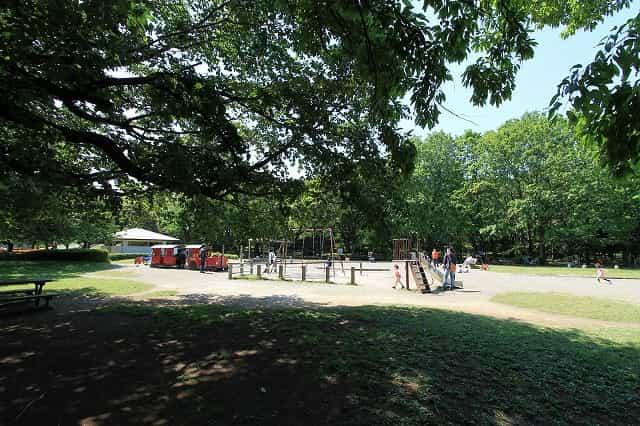 大泉中央公園 遊具