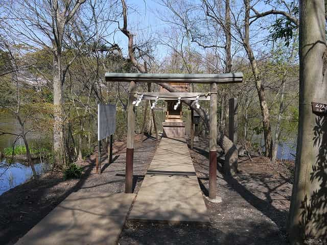 石神井公園 神社