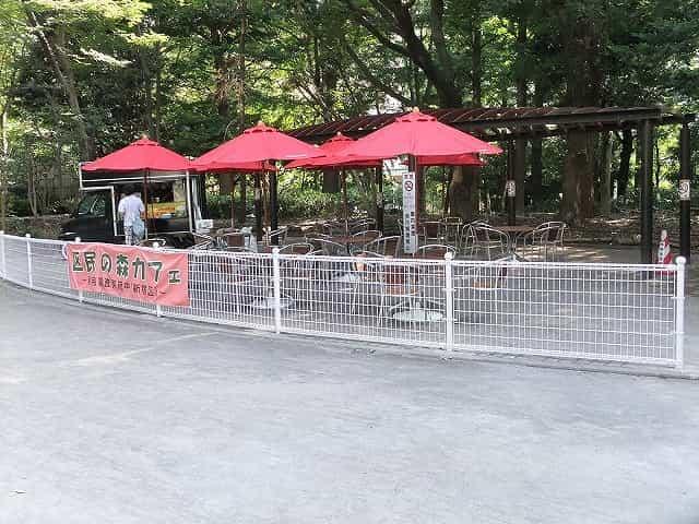 新宿中央公園 区民の森