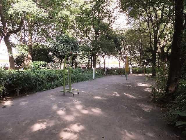新宿中央公園 健康遊具の森