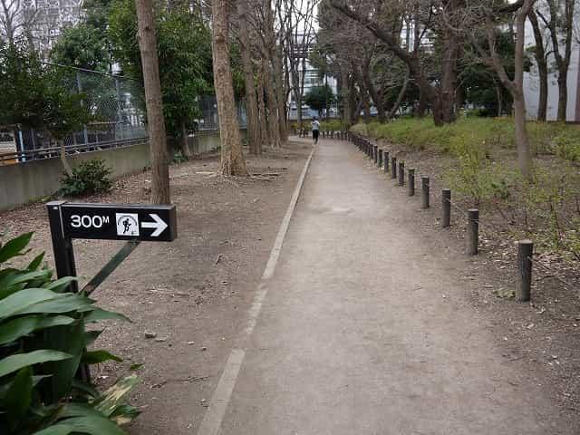 戸山公園(大久保地区) ジョギングコース