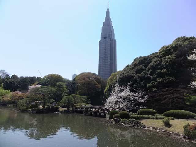 新宿御苑 日本庭園 NTTドコモビルと庭園のコラボレーション