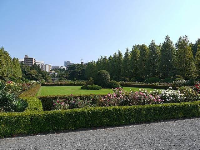 新宿御苑 フランス式整形庭園