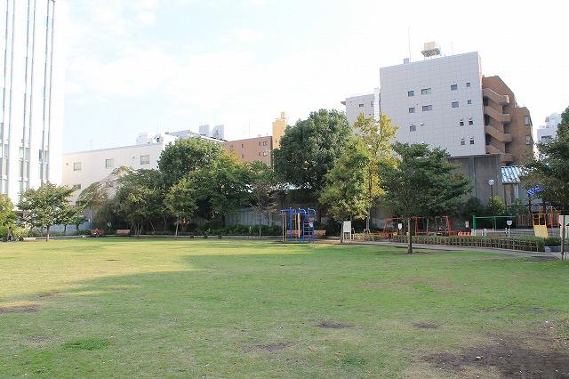 和泉公園 芝生広場