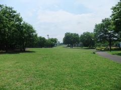 若葉台公園