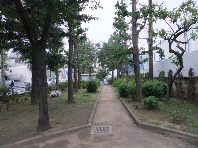 七号通り公園