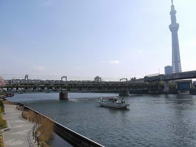 隅田公園(台東区)