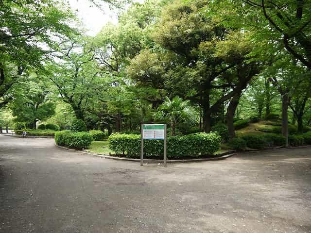 隅田公園(墨田区)