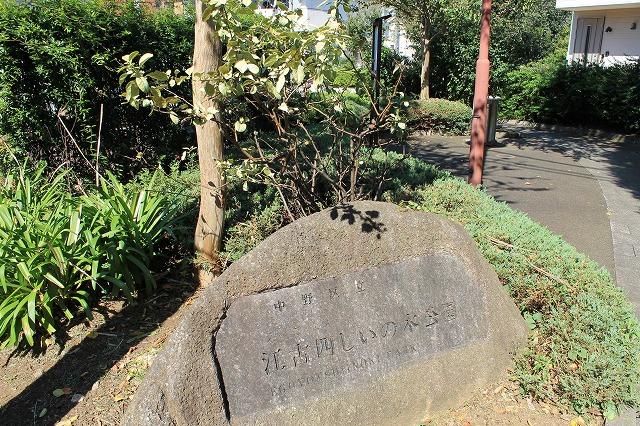 江古四しいの木公園