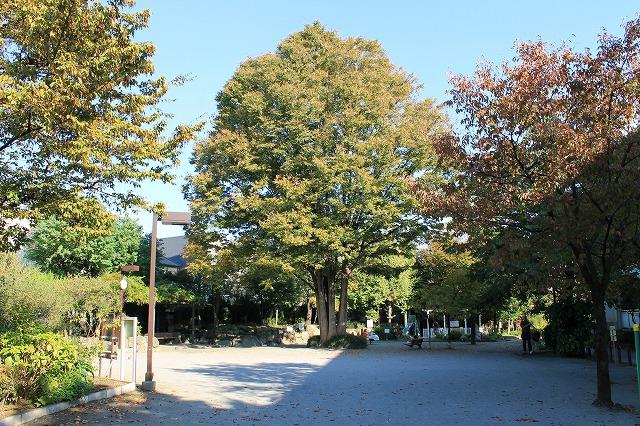 桜上水公園