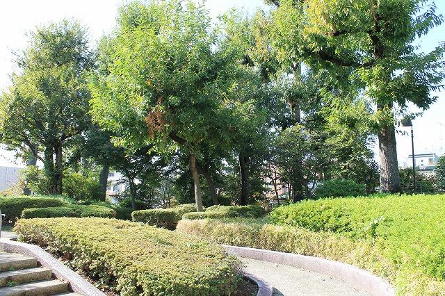 くぬぎ公園