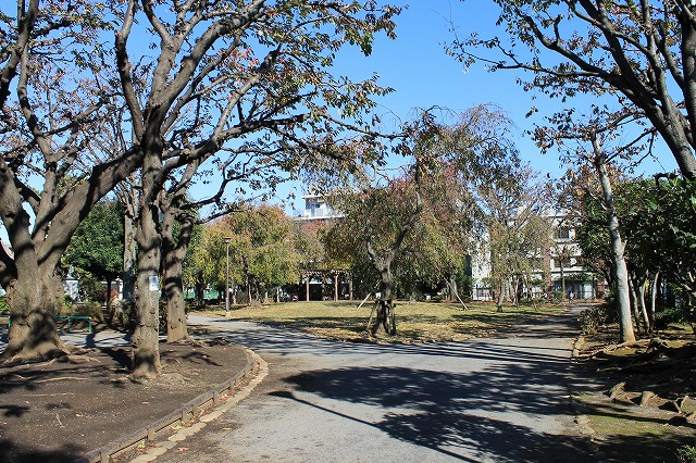 希望丘記念公園