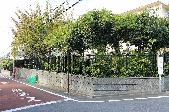 井草ひまわり公園