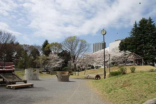 戸山公園(大久保地区)