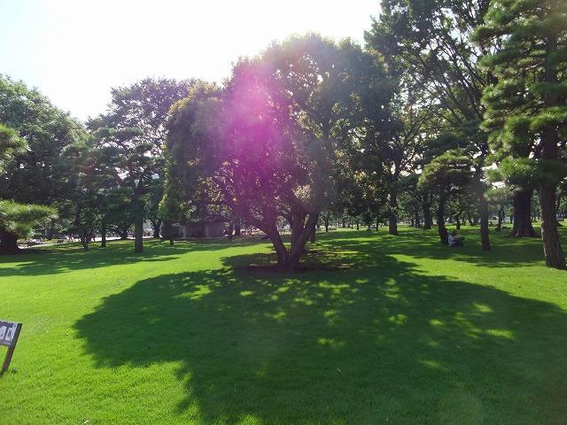 皇居外苑 楠木正成像