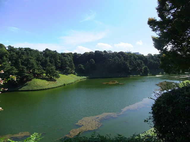 千鳥ヶ淵公園
